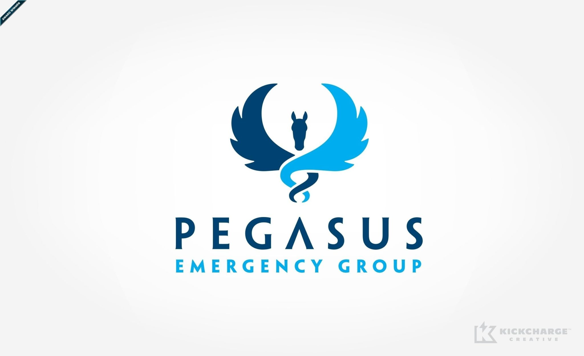 Pegasus Emergency Group