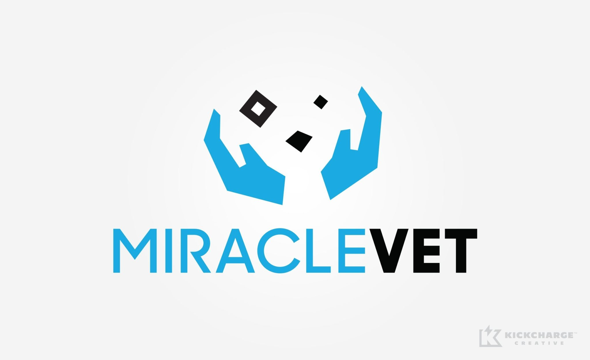 MiracleVet